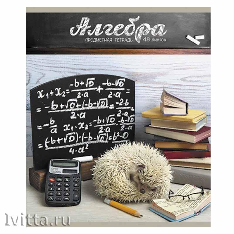 Тетрадь 48 листов предметная Тайная жизнь ежей Алгебра (клетка)