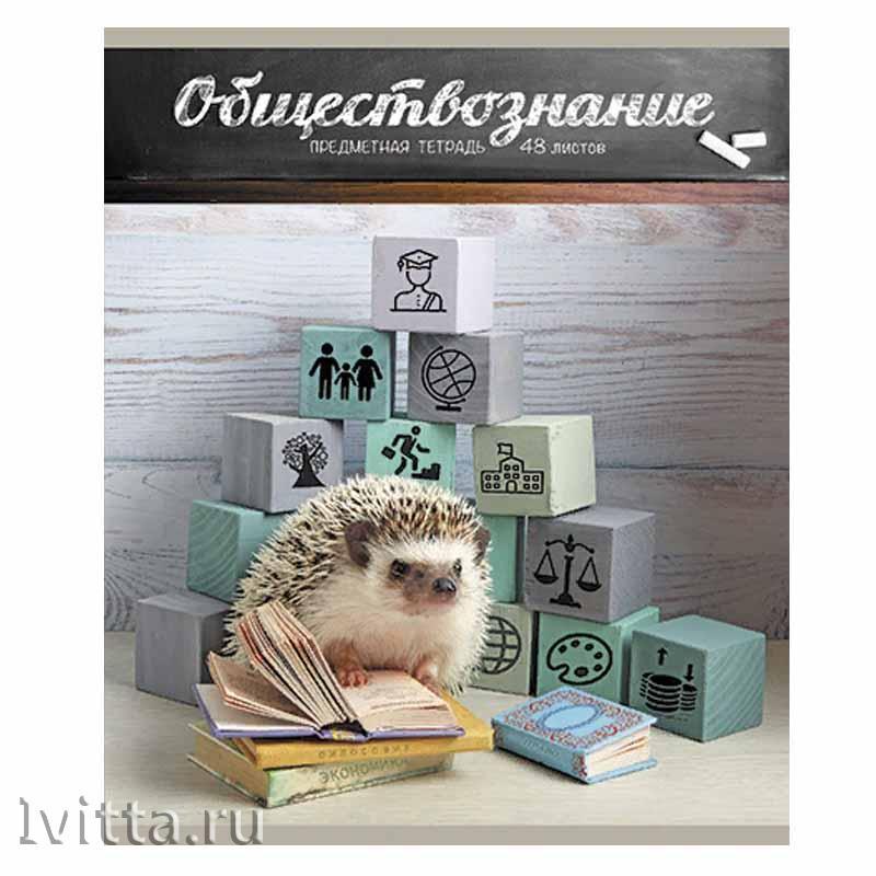 Тетрадь 48 листов предметная Тайная жизнь ежей Обществознание (клетка)