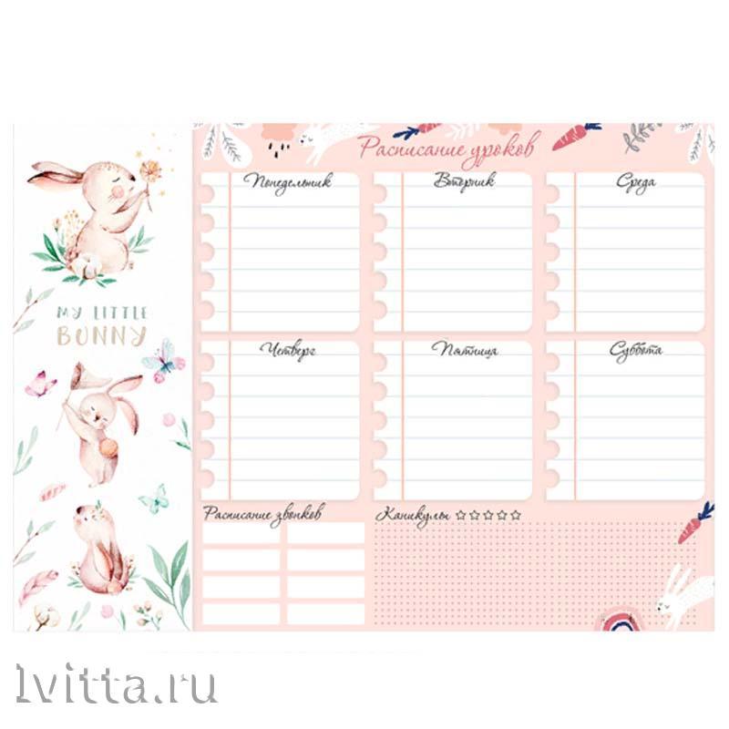 Расписание уроков с расписанием звонков А4 ArtSpace Пиши-стирай Зайчики