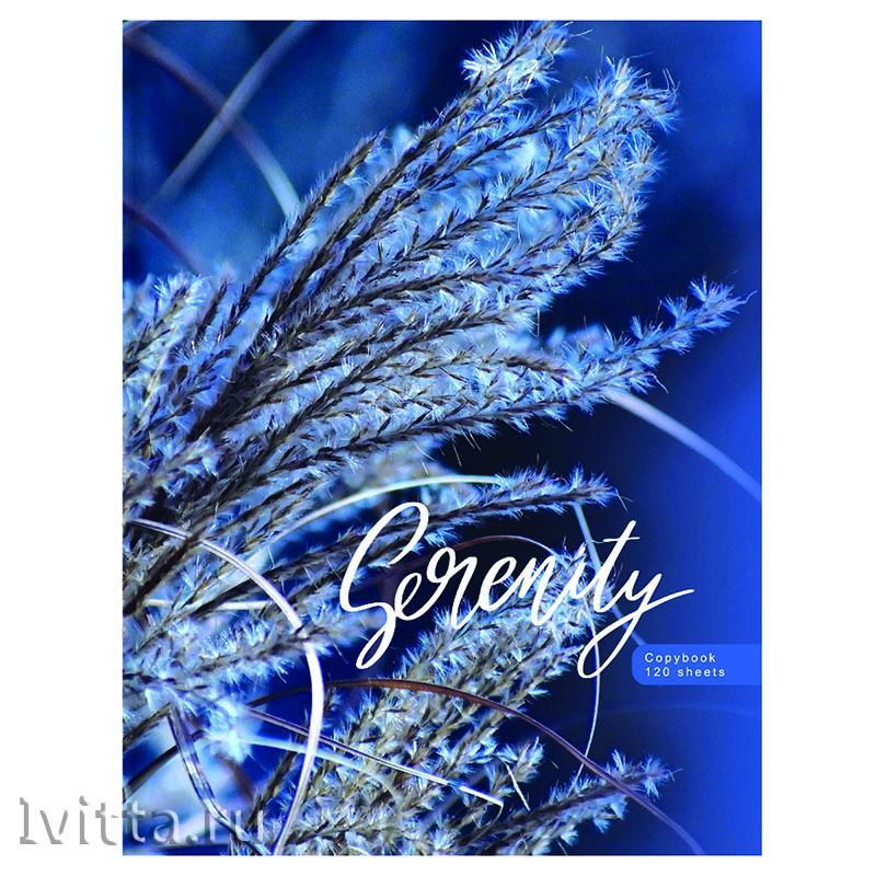 Тетрадь на кольцах А5 120л BG Blue serenity